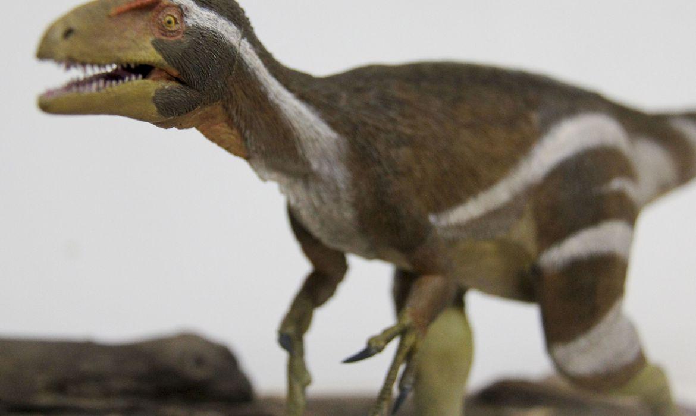 Aratasaurus museunacionali ou nascido do fogo é o nome do novo dinossauro